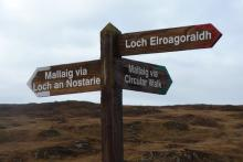 The are several well signed walks around Mallaig