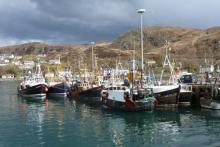 Mallaig is still an active fishing port