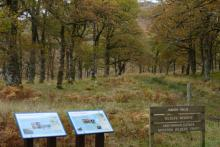 The Scottish Wildlife Trust Reserve at Rahoy