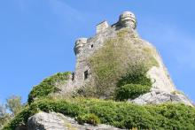 Castle Tioram, now a stronghold for ivy