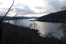 Loch Sunart from the Salen Oakwoods