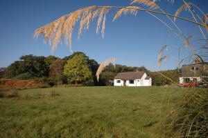 Loch View Cottage in sunny Ardnamurchan.